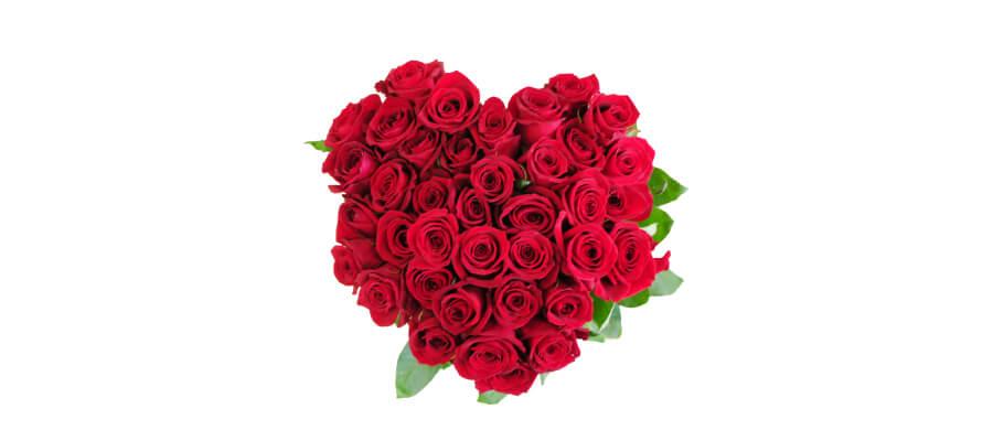 バラは本数ごとに意味合いが込められている