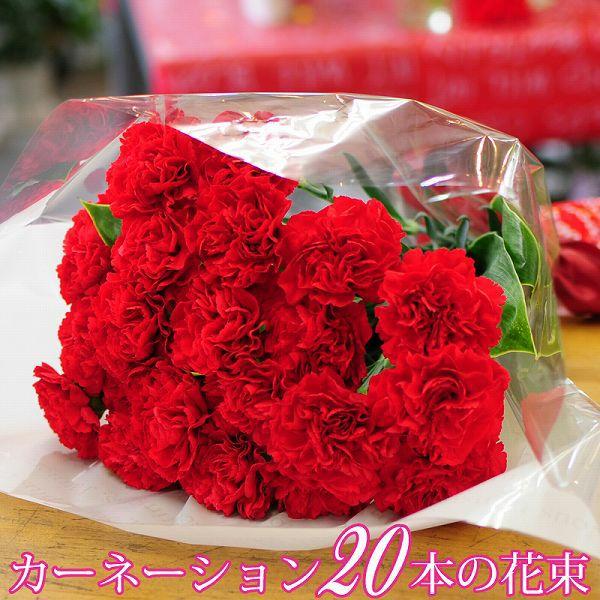 赤いカーネーション20本の花束